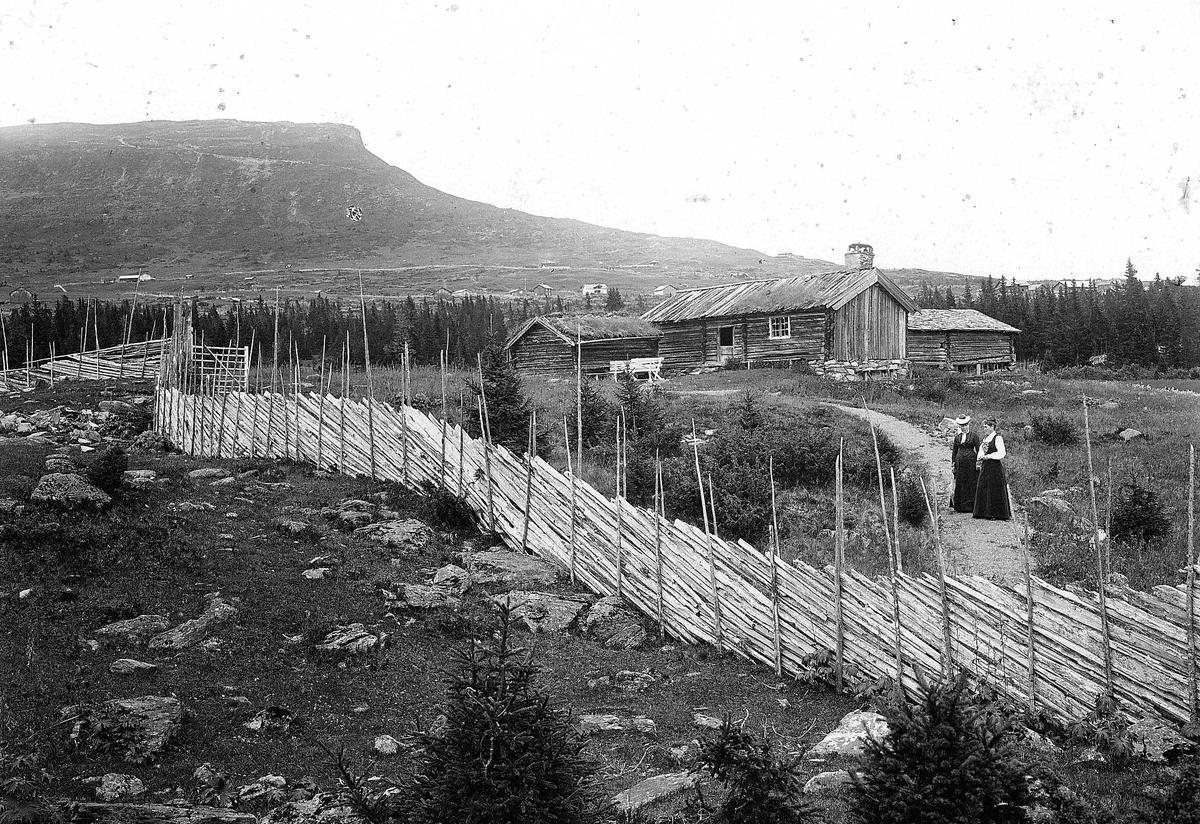 Seter, antatt, med skigard i forgrunnen, ved Skeikampen, Gausdal, Oppland. Flere seterhus, To kvinner på veien.  Serie tatt av Robert Collett (1842-1913), amatørfotograf og professor i zoologi.