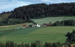 Fuglesang nordre, Ringsaker, Hedmark