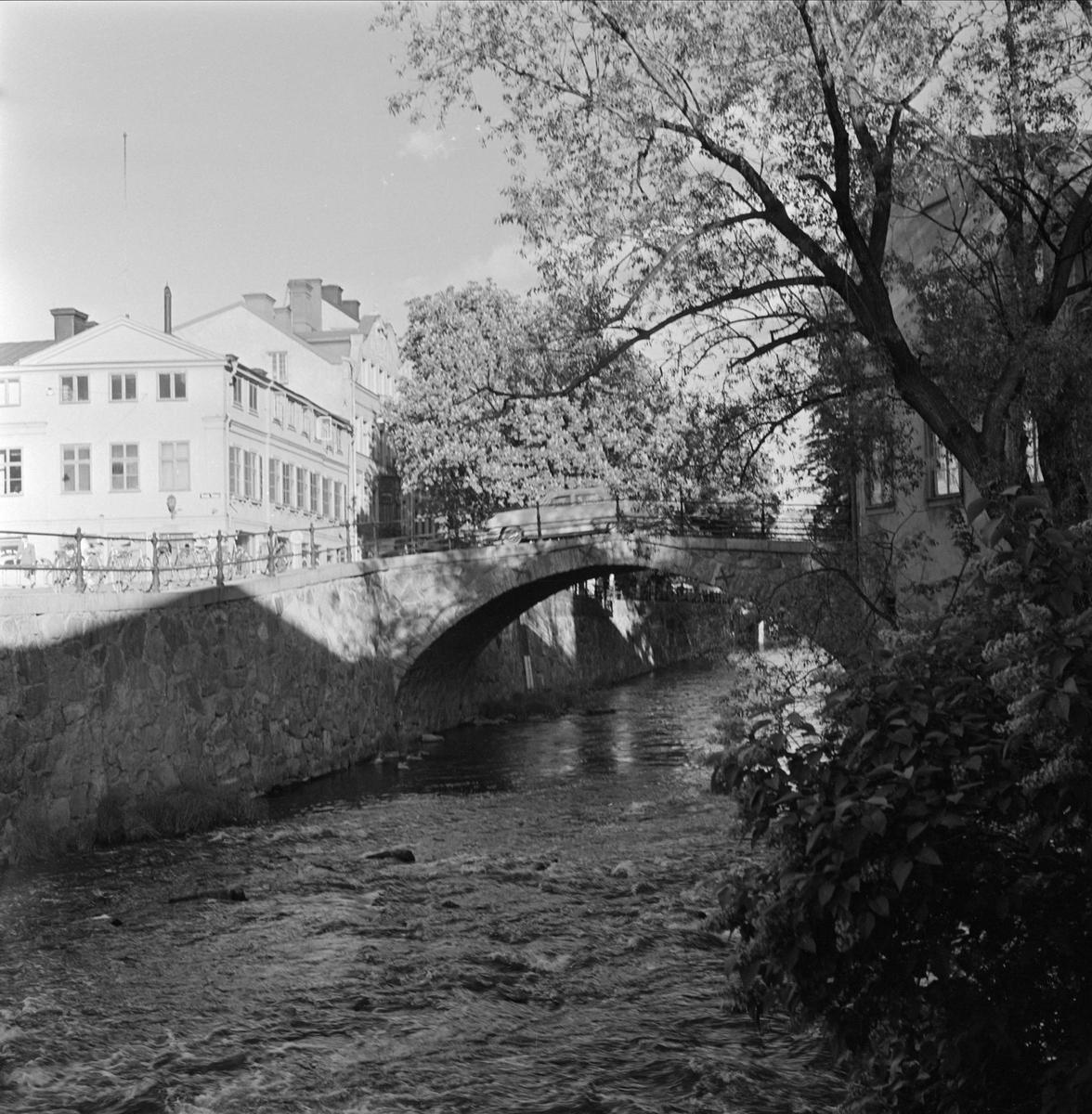 Dombron över Fyrisån, Uppsala