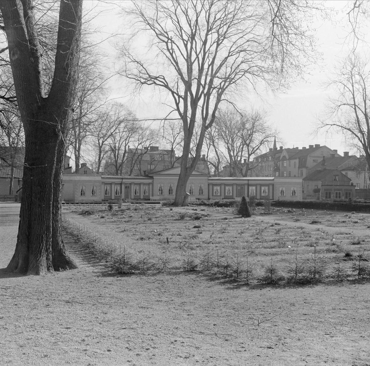 Linnéträdgården, kvarteret Örtedalen, stadsdelen Dragarbrunn, Uppsala