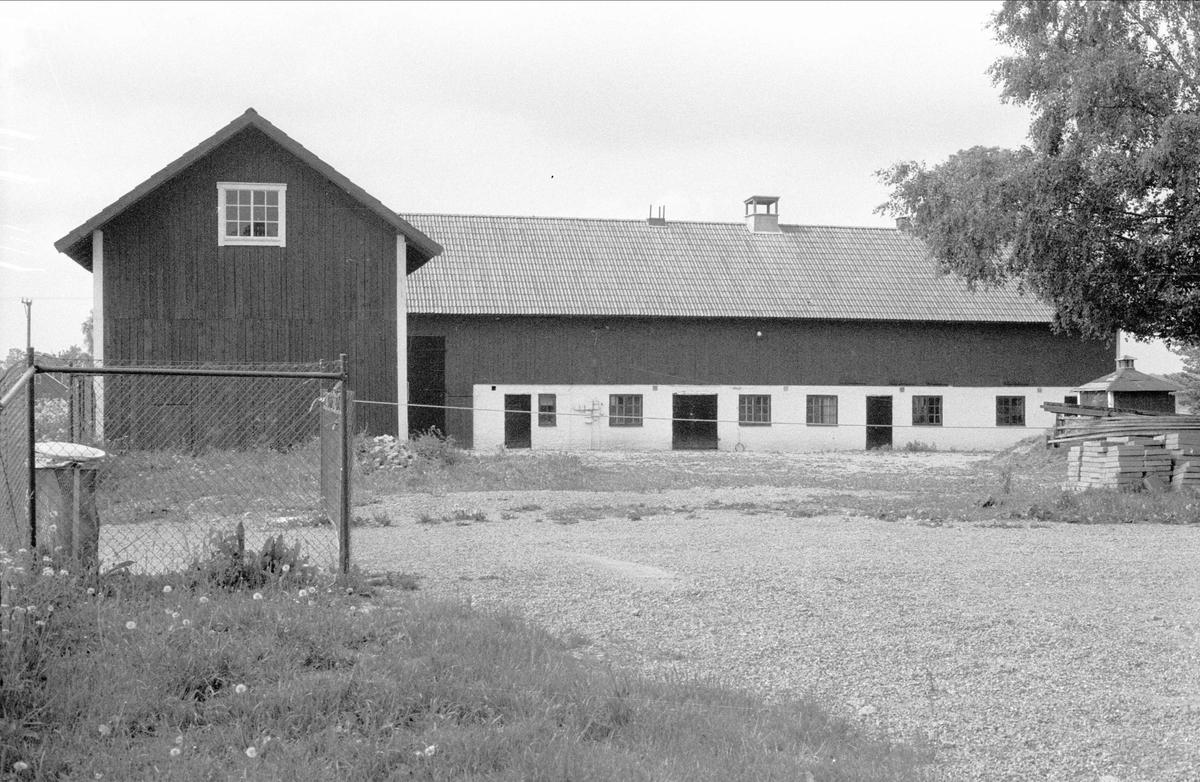 Magasin och ladugård, Rörby 7:2, Bälinge socken, Uppland 1983