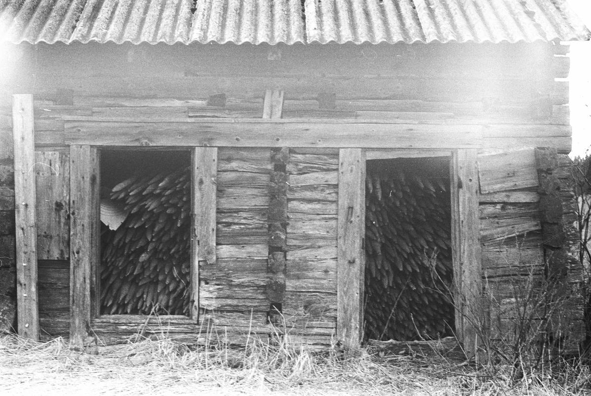 Störhus, Hjälmstugan, Lena socken, Uppland 1977