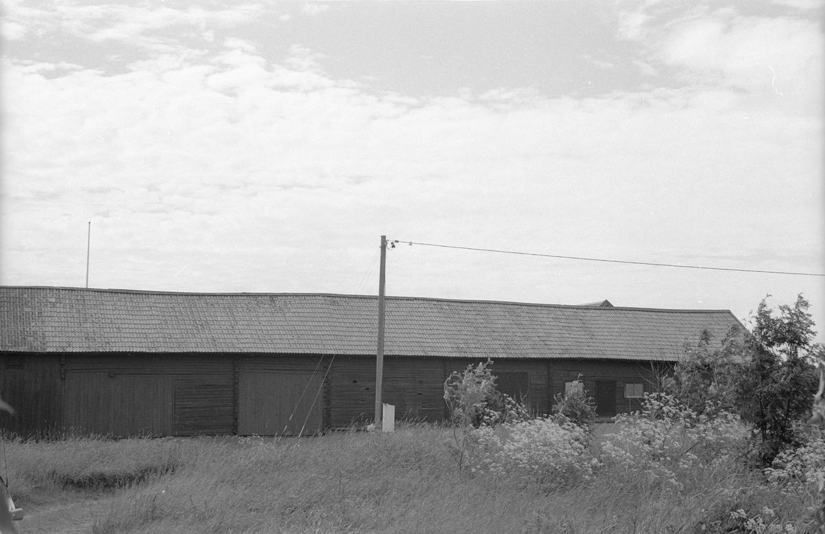 Vy över ekonomibyggnader, Sotter 1:4 E, Sotter, Knutby socken, Uppland 1987