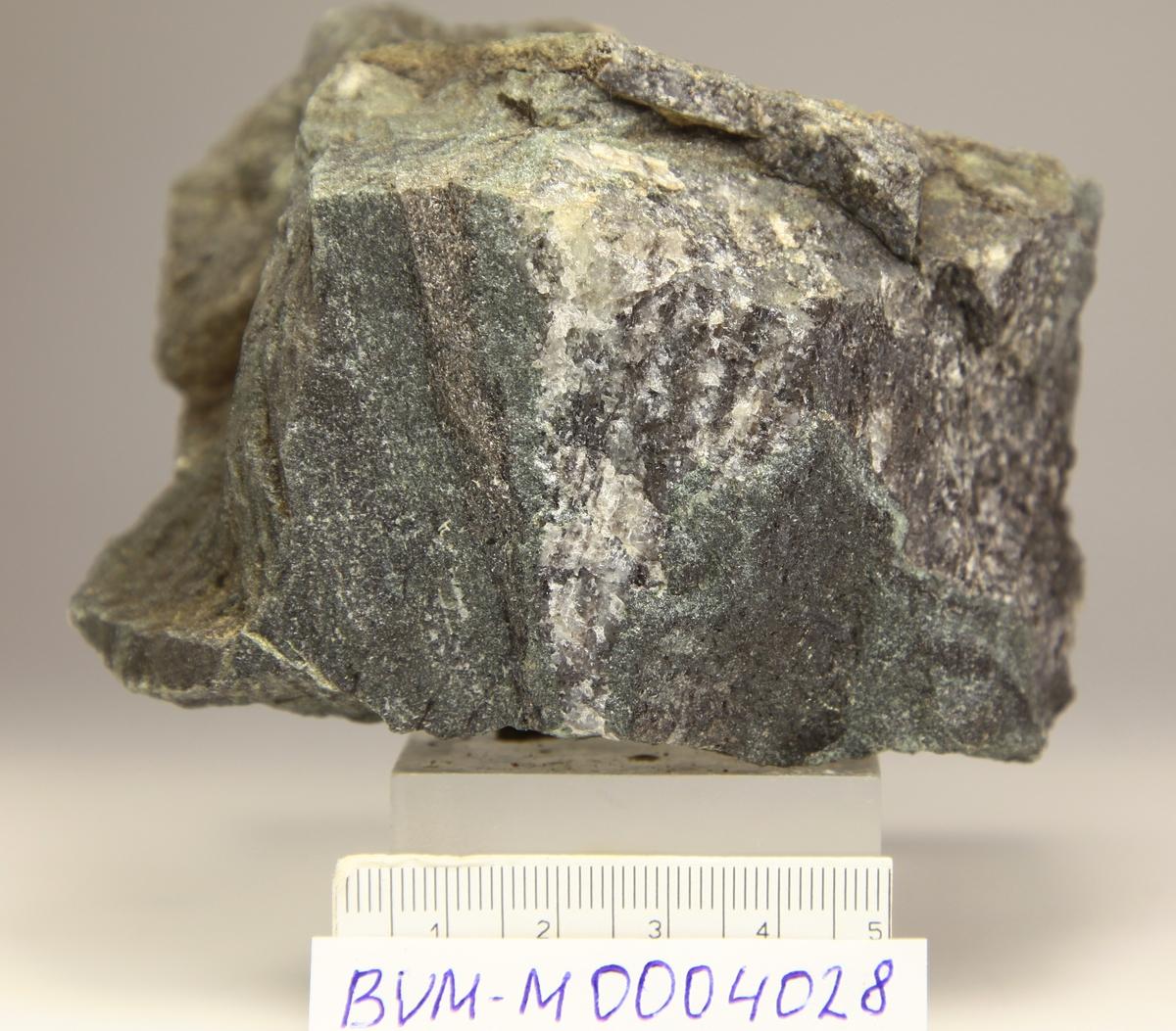 Gedigen sølv i sølvrik åre ca. 0,5 cm bred. Gardar skjerp ca 500 m syd for Ramberg skjerp.