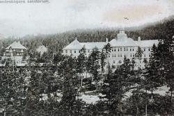 Landeskogen sanatorium, Byglandsfjord.