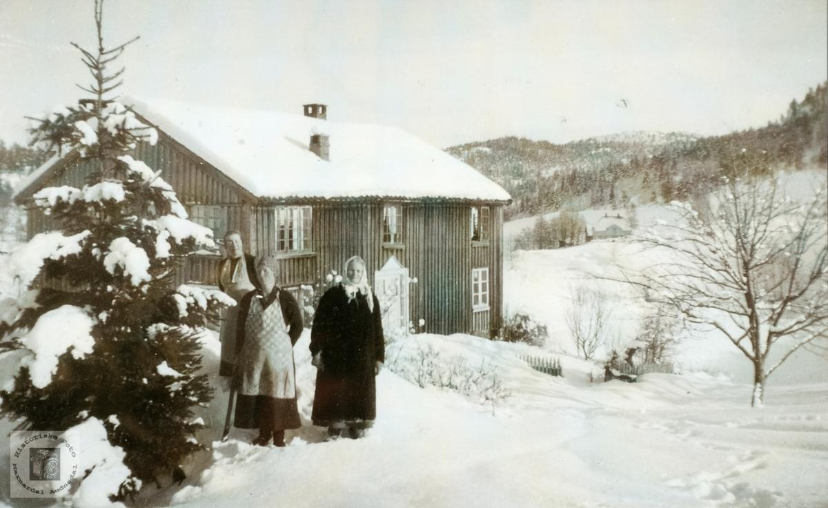 """Garden """"Hauen"""" på Ubostad i vakker vinterdrakt. Grindheim senere Audnedal."""
