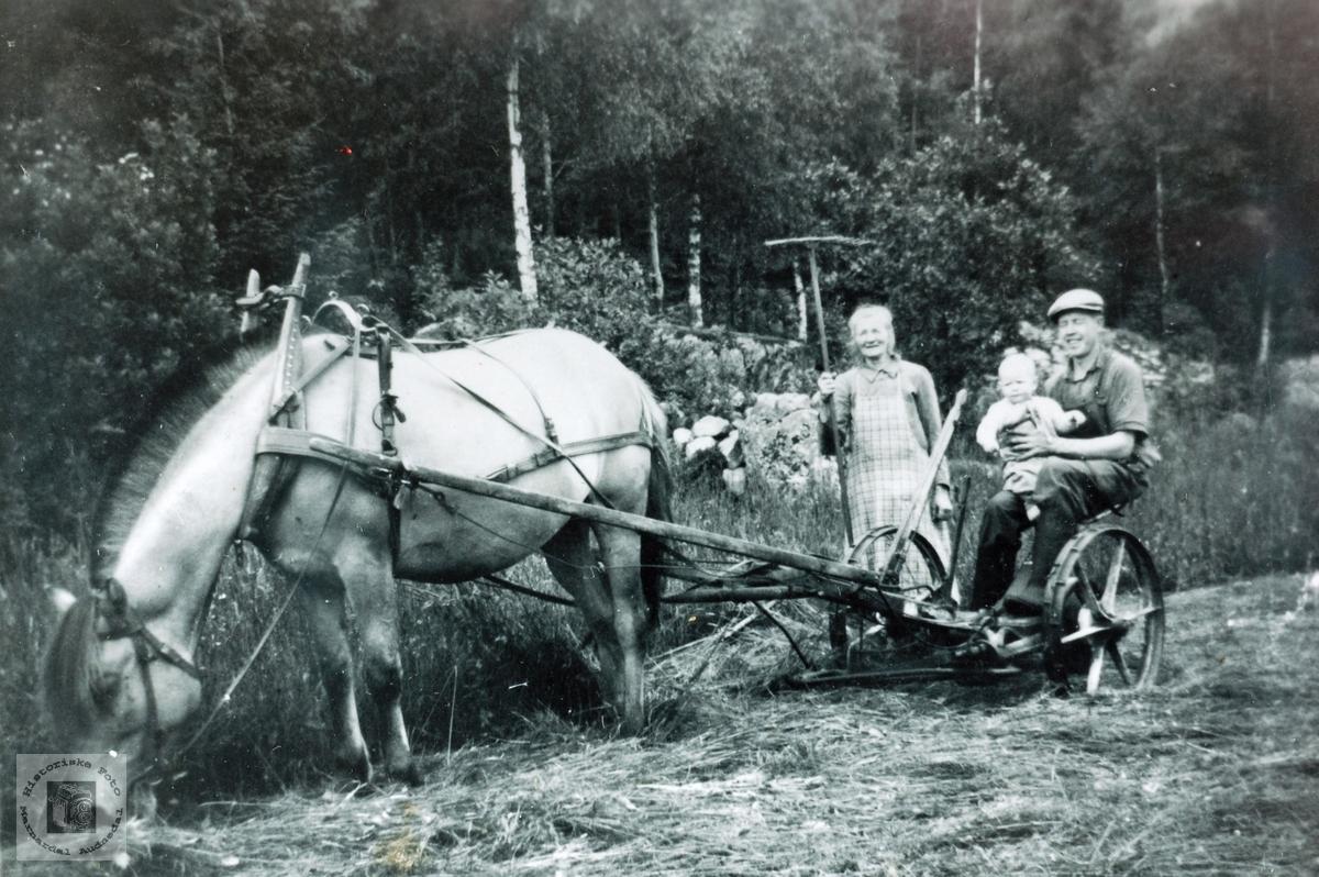 Slåttonn på Høyland. Grindheim Audnedal.