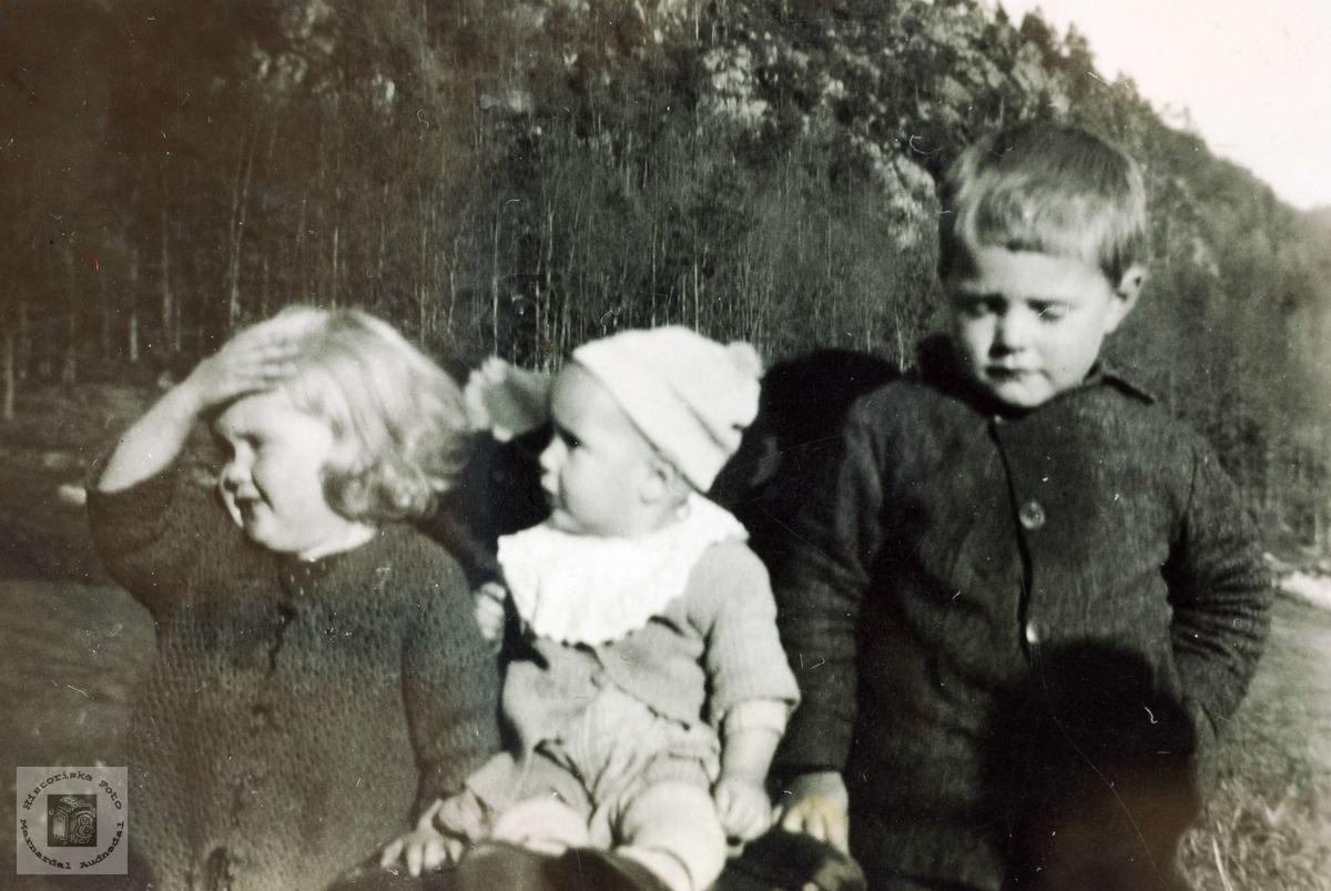 Tre søte små barn fra Håland. Grindheim Audnedal.