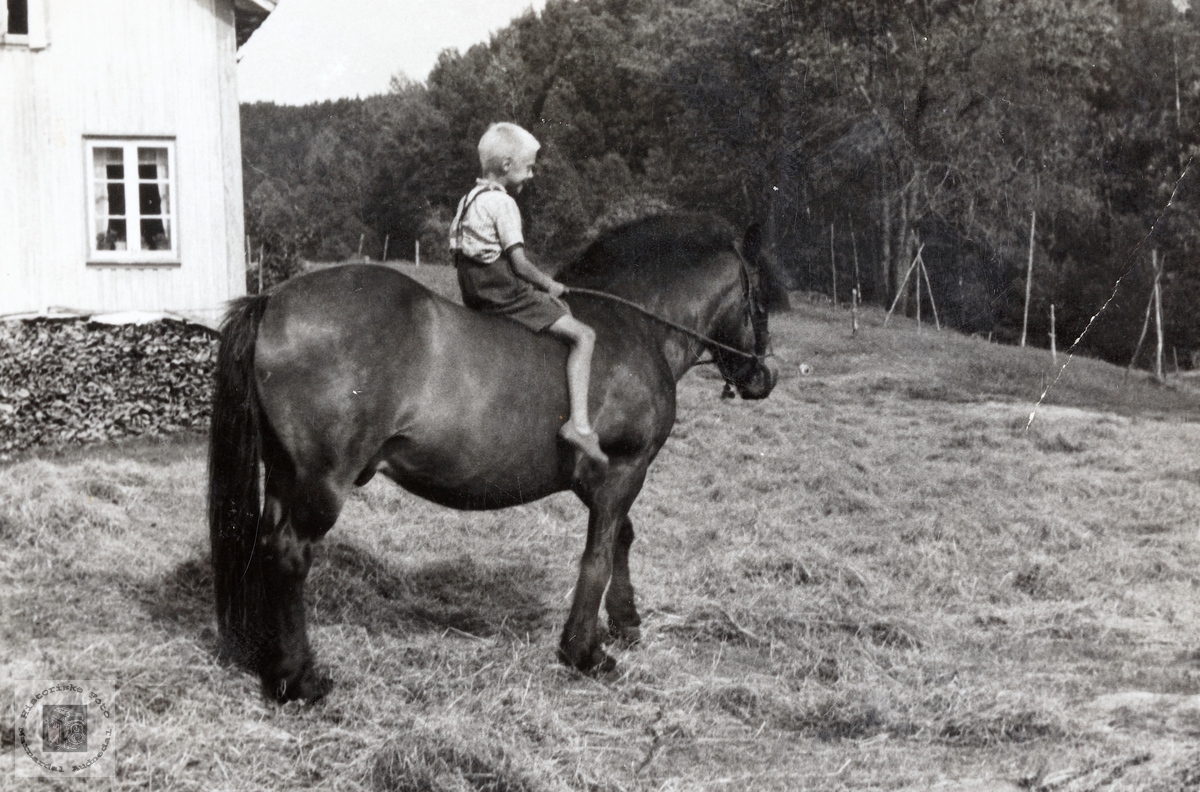 Kåre Flåt på hesteryggen. Bjelland Audnedal.