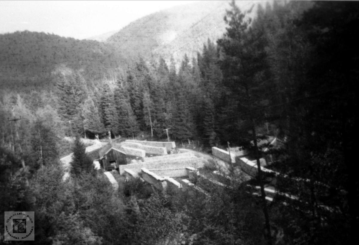 Stavsesong, Breilid, Bjelland.