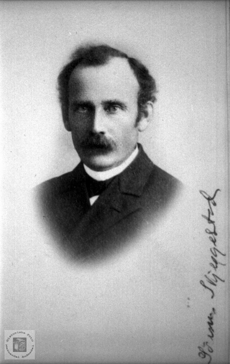 Portrett Søren Skjeggestad, Bjelland.
