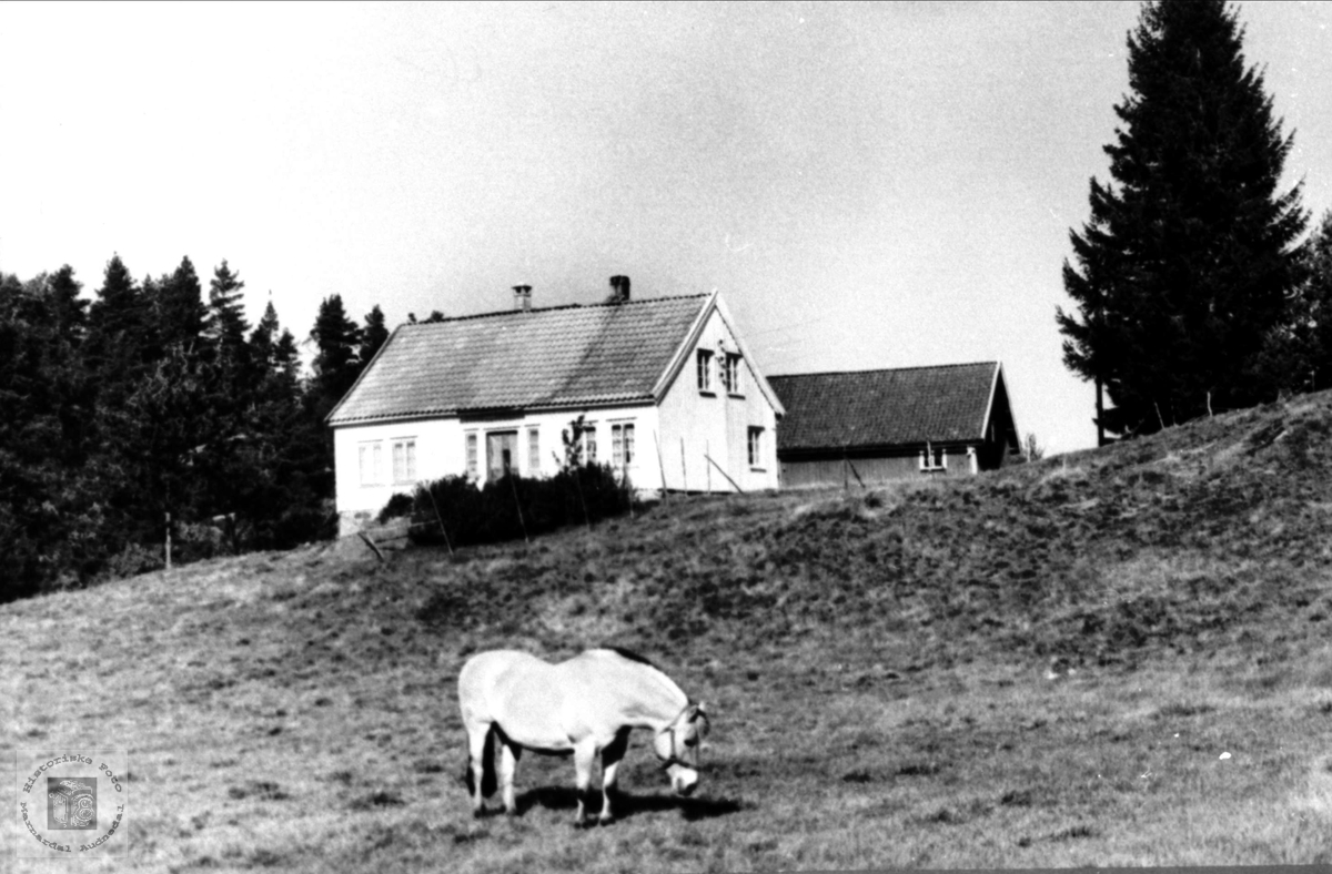 Fladeli i Øyslebø.