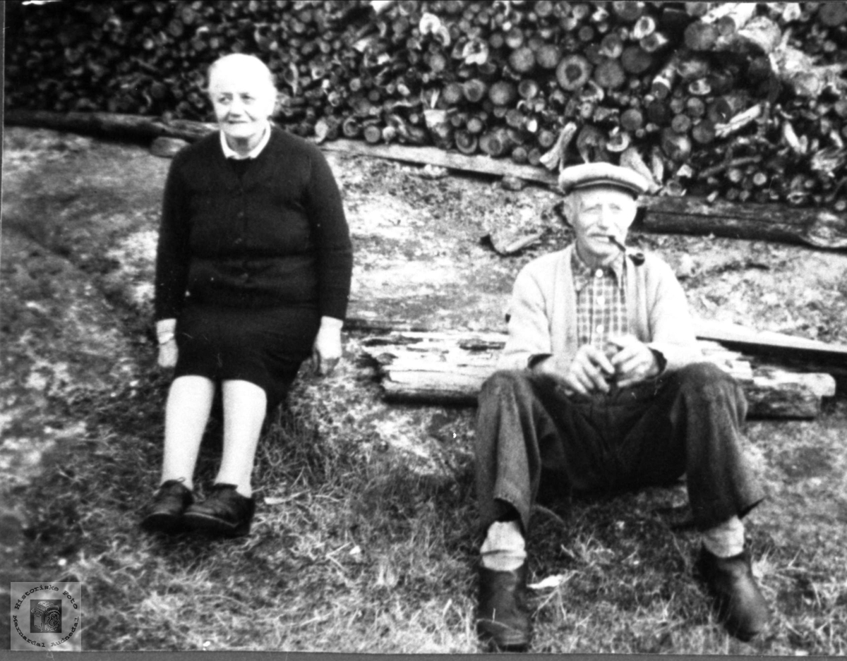 Søsknene Gurine Tomine og Andreas Bjørnestøl, Øyslebø.