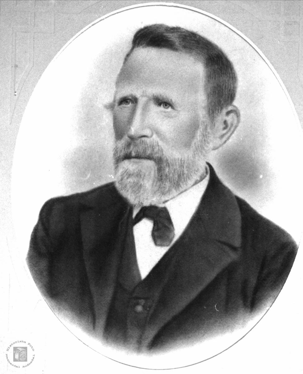 Portrett av Stian Skaar, Øyslebø.