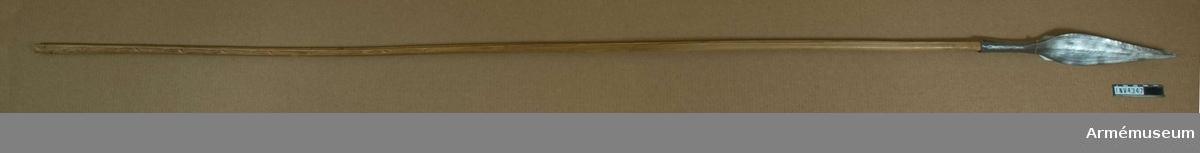 Spjut från Tibestibergen, Sahara, Afrika. Spetslängd m holk: 382 mm. Skaft av bambu. På stötklingan otydliga gravyrer. Stam: Toubu (teda). Insamlingsår: 1950-52.