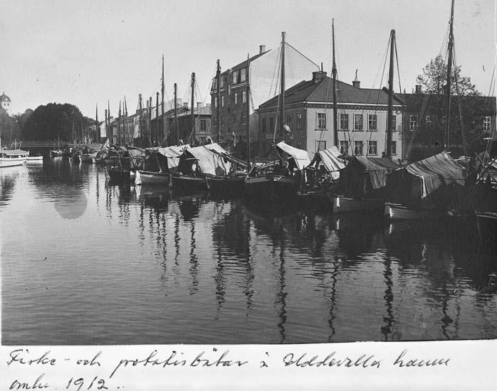 """Text som medföljer kortet: """"Fiske- och potatisbåtar i Uddevalla hamn omkr. 1912""""."""