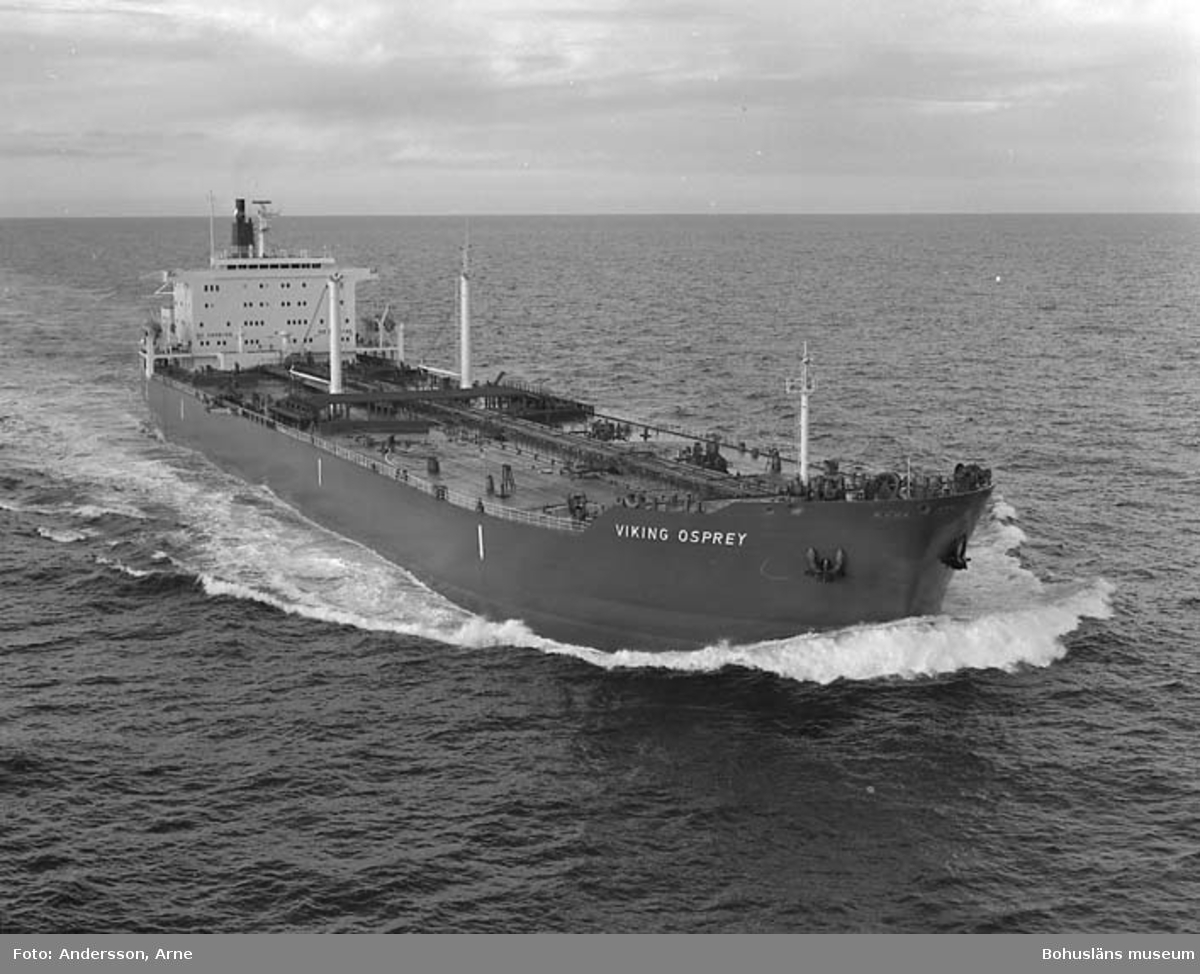 M/T Viking Osprey D.W.T. 34.800 Rederi Norse Group (J P Röed), Singapore Kölsträckning 80-04-28 Nr. 315 Leverans 81-02-05 Tankfartyg