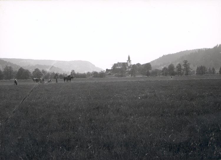 "Noterat på kortet: ""BERFENDAL"". ""FOTO DAN SAMUELSON 1924. KÖPT AV DENS. DEC. 1958""."
