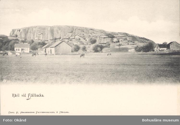 """Tryckt text på kortet: """"Käril vid Fjällbacka"""". """"Carl E. Johanssons Pappershandel & Förlag""""."""