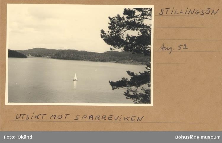 """Noterat på kortet: """"Stillingsön. Aug. 52."""" """"Utsikt mot Sparreviken."""""""