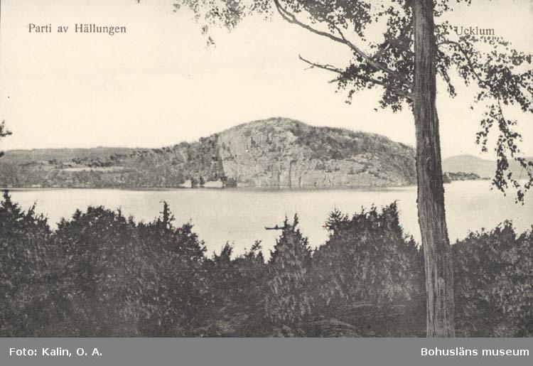"""Tryckt text på kortet: """"Parti av Hällungen. Ucklum."""""""