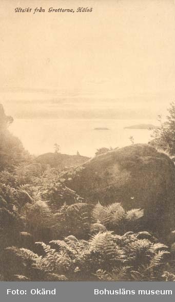 """Tryckt text på kortet: """"Utsikt från Grottorna, Hälsö."""" """"Förlag: Larssons Bok, Musik- & Pappershandel, Strömstad."""""""