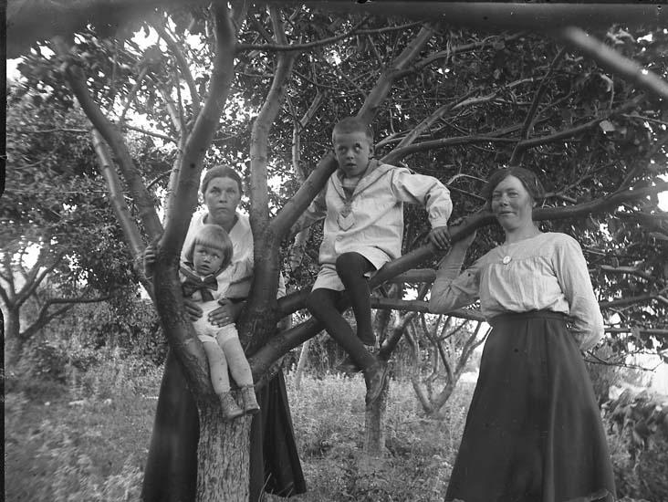 """Enligt notering: """"I trädgården! Två kvinnor, två barn""""."""