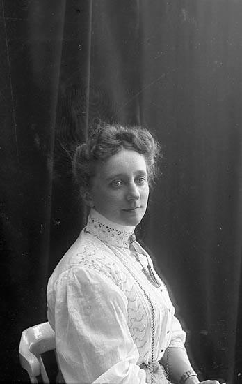 "Enligt fotografens journal nr 1 1904-1908: ""Hasselström, Fr. Anna Sköfde""."