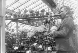 Trädgårdsmästare Knut Karlsson, Stenungsund