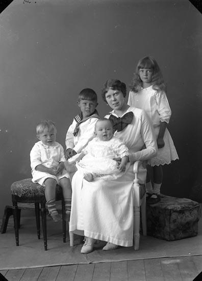 """Enligt fotografens journal nr 2 1909-1915: """"Jönsson, Fru Sigrid Här""""."""