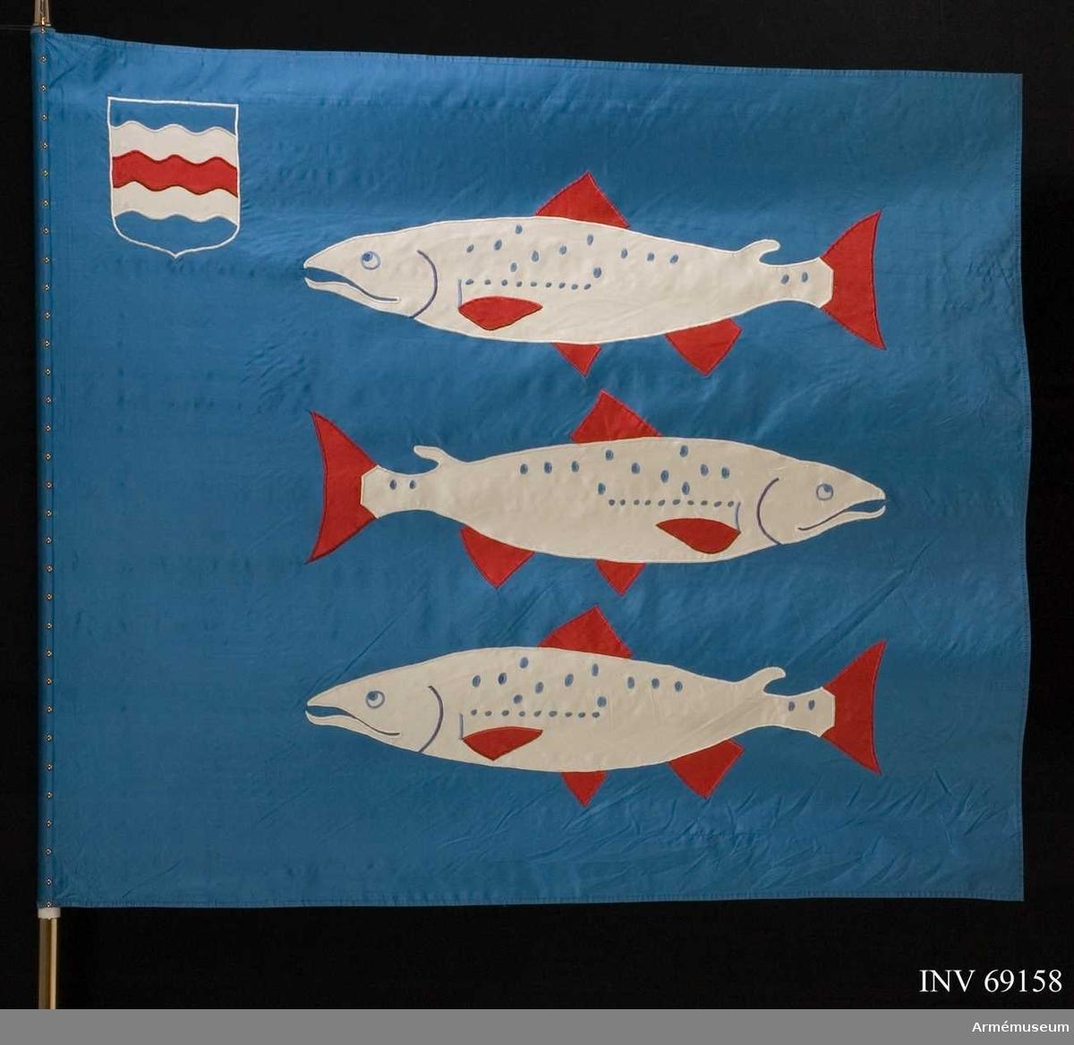 På blå duk landskapet Ångermanlands vapenbild; tre vita laxar med röd beväring, den mellersta vänsterställd, och i övre inre hörnet landskapet Medelpads vapenbild; med vågskuror fyra gånger delat av blått, vitt, rött, vitt och blått.  Duken är av siden och motivet utfört i intarsia och maskinbroderi. Fanspets med Carl XVI Gustafs namnchiffer. Delad stång.