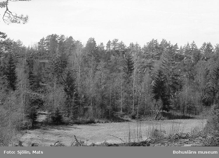 Bohusläns samhälls- och näringsliv. 2. STENINDUSTRIN. Film: 6