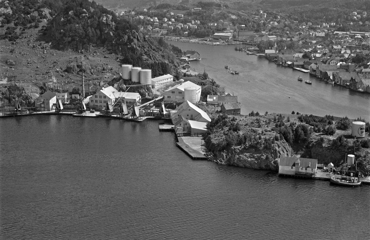 Egersund sildoljefabrikk, havnen
