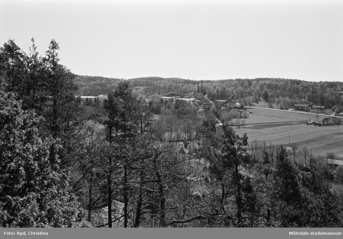 Vy över Torpet från Börsåsberget, 1991.