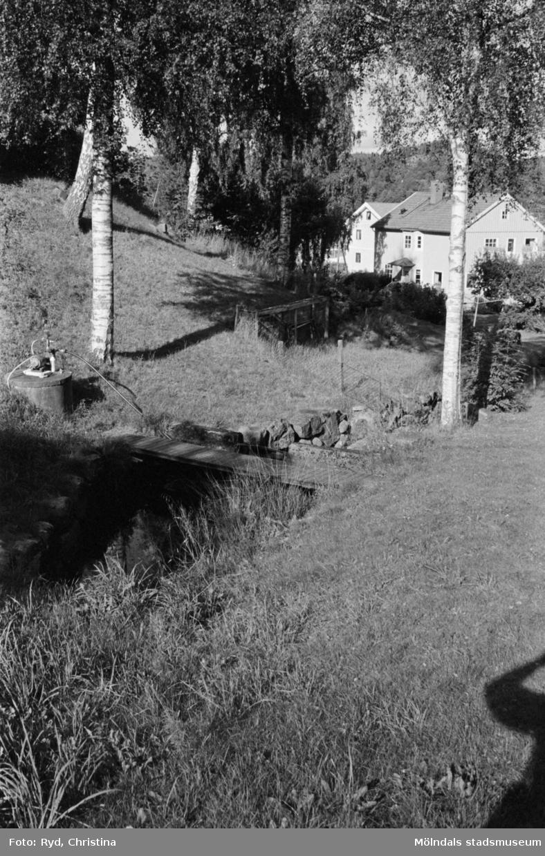 Landskapsbilder i Hällesåker, 1991.