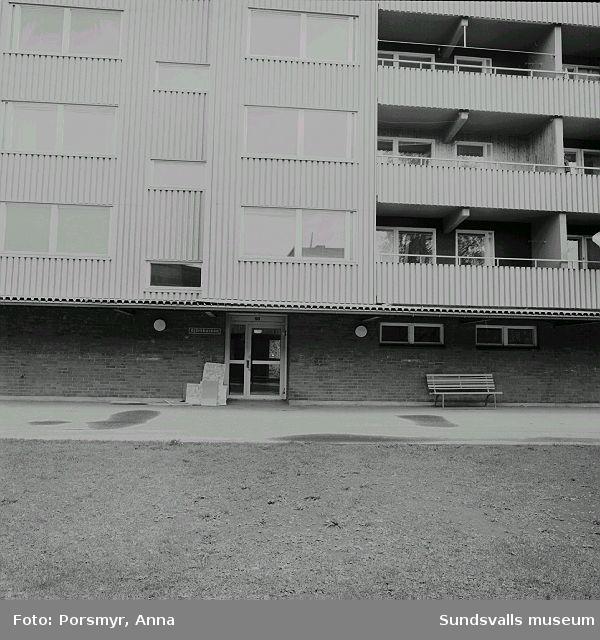 Mitthem AB:s hyreshusområde i Bergsåker, Ponnyvägen 1 - 19, Betselvägen 14 - 68:01Gångstråket mellan Betselvägen 30 - 6202 - 03 Betselvägen 24 - 1404 Betselvägen 30 - 42 med Bergsåkers Dagcentral i nummer 3405 Duschslangar 06 Betselvägen 42 - 30 07 Betselvägen 42 - 30 med Bergsåkres Dagcentral i nummer 3408 Bangolfbanan med husen längs Betselvägen 40 - 64 i bakgrunden09 Entré, Betselvägen 50, med bl.a. Björkbackens äldreboende10 Betselvägen 48 - 6211 Väggklotter12 Ponnyvägen 1 - 19