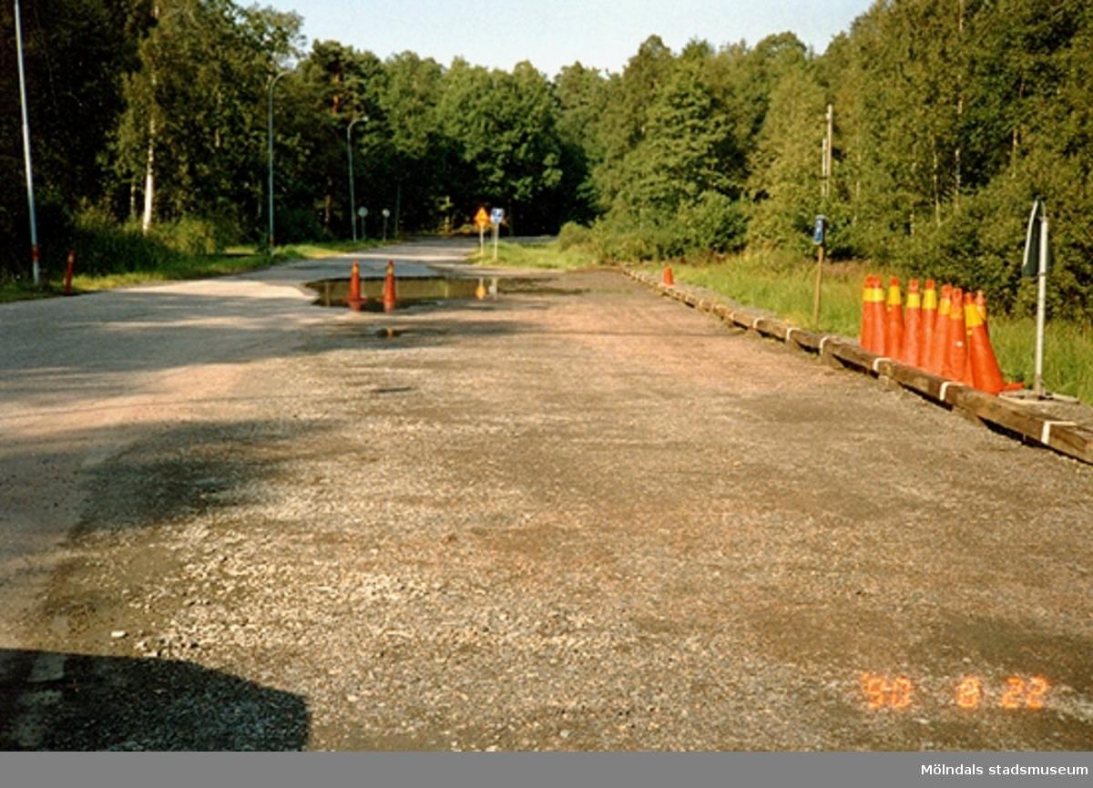 En väg i Gunneboskogen, augusti -90.