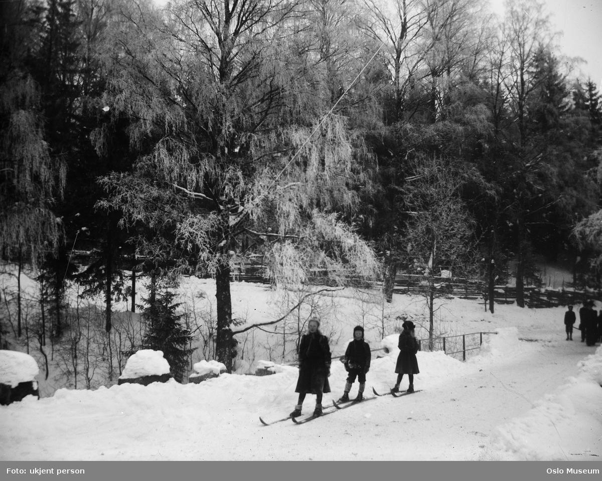 skog, snø, barn, skitur