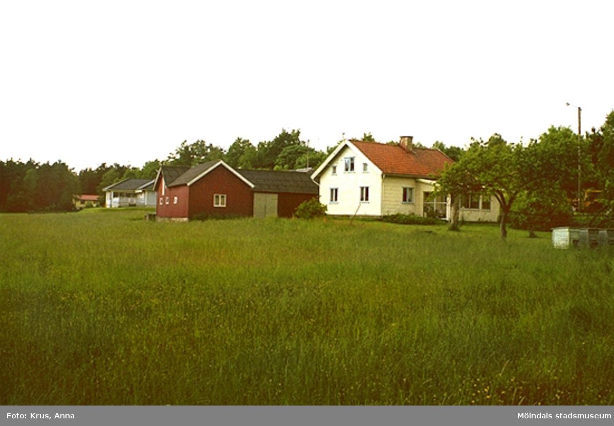 Bostadshus med stall i förgrunden. Gårdsbild från sydväst.Dammkärr/Tulebo?
