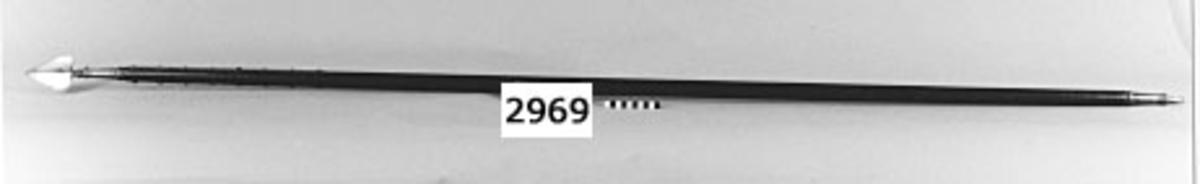 """Assagaj (vapen från """"Kap""""). Material: spetsen av järn, skaftet av trä. Hemfört till Karlskrona med långresefartyg"""
