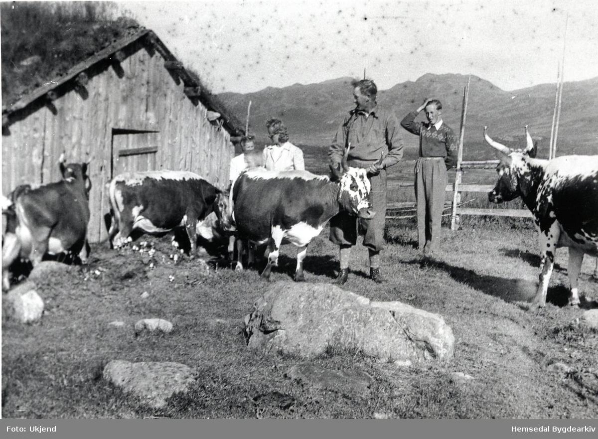 Biletet er tek på Halso, ca. 1947. Frå venstre: Margit og Gudrun Helga Løvehaug, Magnhild Løvehaug, fødd Ausen, Olav Løvehaug og Svein Skolt.
