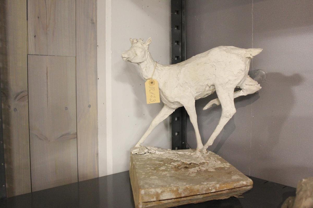 Skulptur i gips av hjort. Forarbeid til gruppe i Studenterlunden Oslo. Se også nr.122