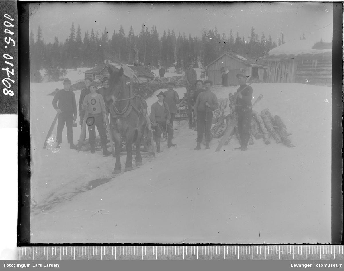 Tømmerkjøring med hest vinterstid.
