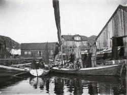 Fiskere som har kommet inn til Ydstebøhavn med sild. Lauritz