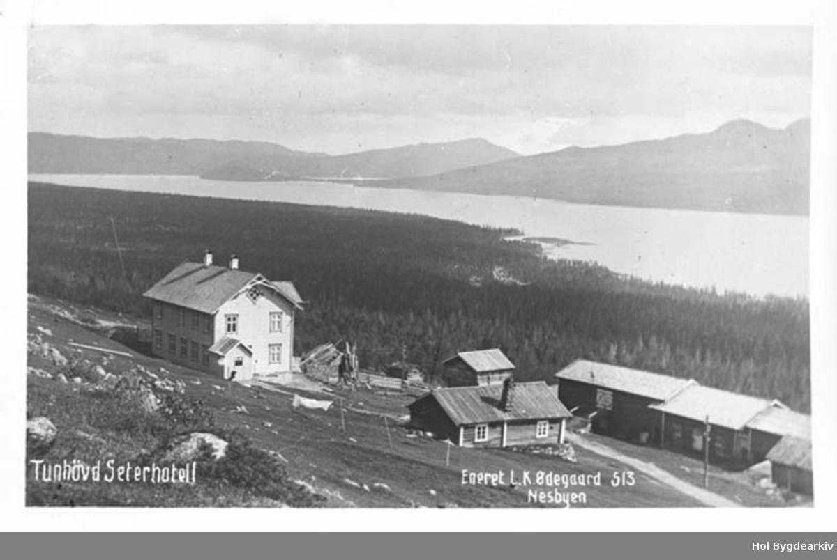 Hotell, Tunhovd Seterhotell, Gardsbruk, Tunhovdsfjorden,