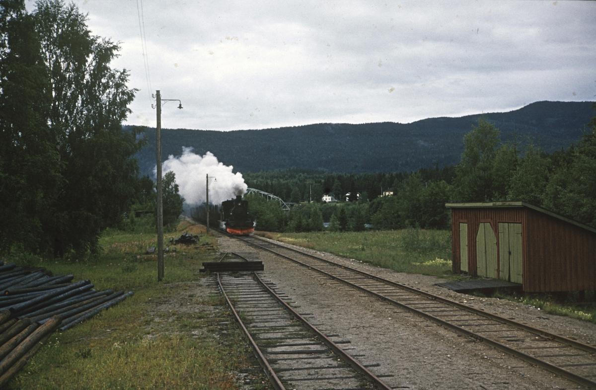 Godstog på Numedalsbanen ved Svene stasjon, trukket av damplok 21b nr. 225.