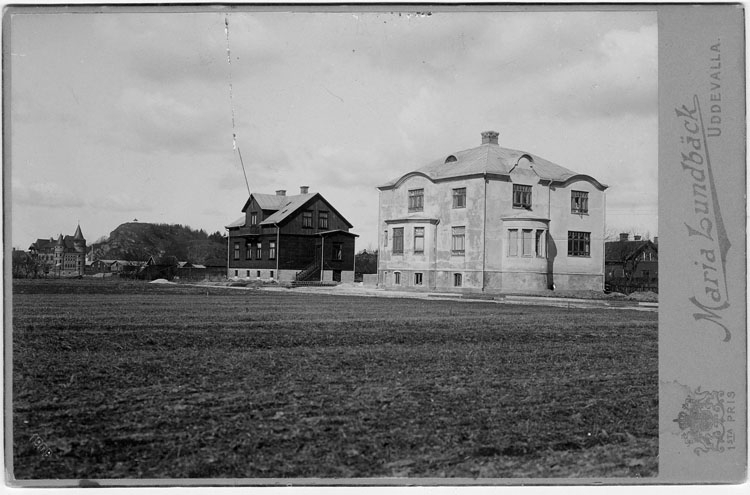 Hjalmar Zachaus villa, Uddevalla