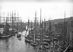 Havnebilde - Fiskebåter.
