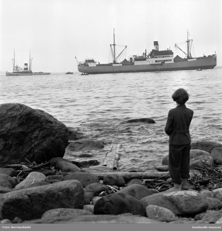 Båten Ring på grund vid Fläsian.