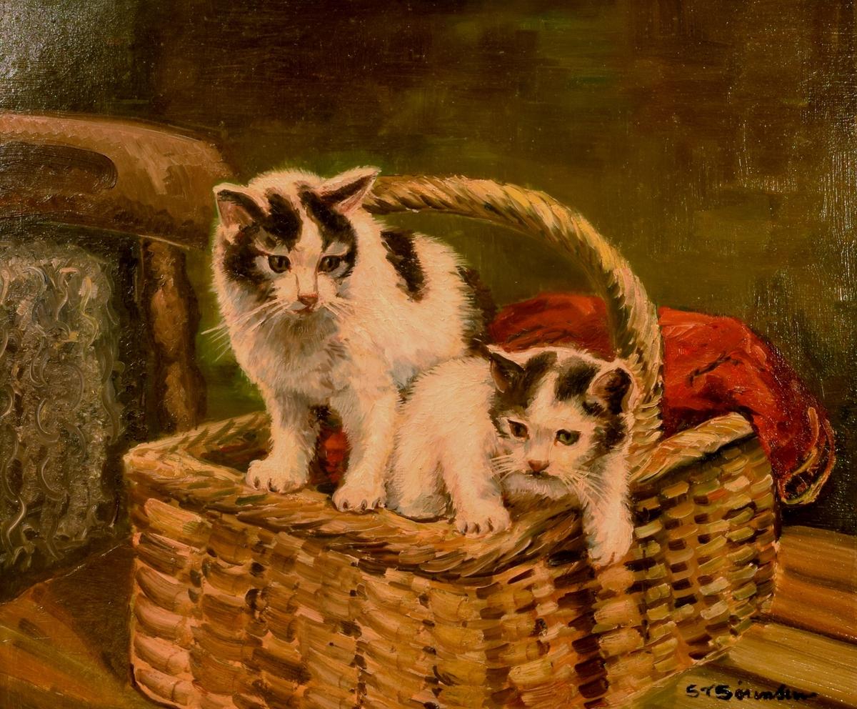 Maleri av to hvite og sorte katteunger i en kurv.